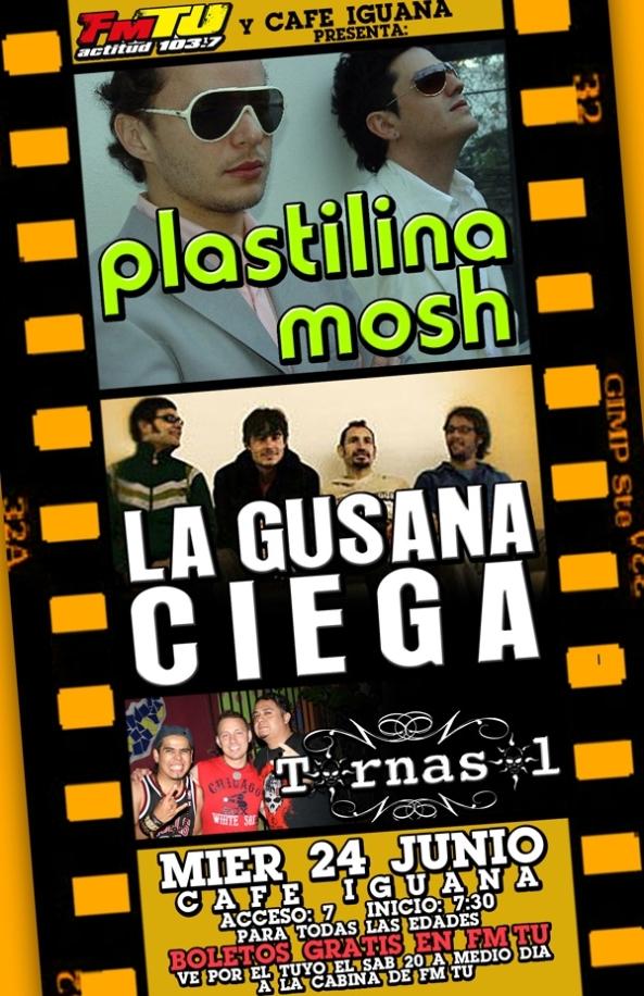 plastilina_gusana_tornasol(1)